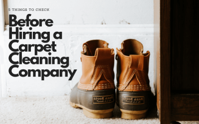5 Things To Check Before Hiring a Carpet Cleaning Company