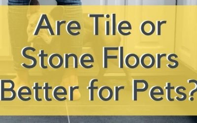 Are Tile or Stone Floors Better for Pets?