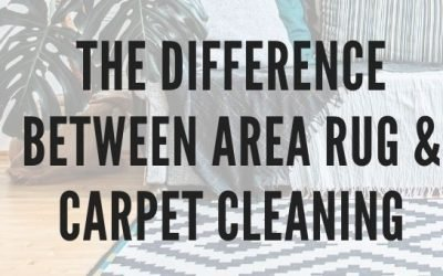 The Difference Between Area Rug and Carpet Cleaning