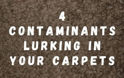4 Contaminants Lurking in Your Carpets